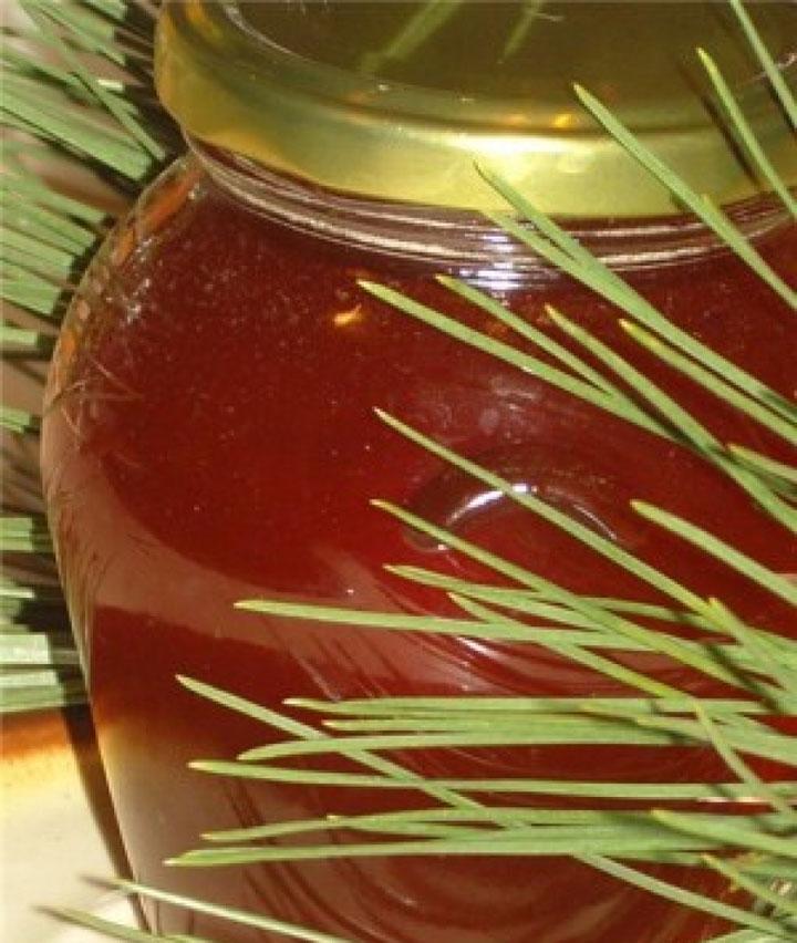 Мед из почек сосны