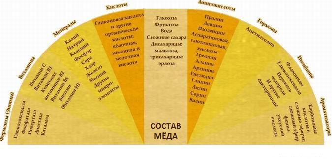 Состав настоящего меда