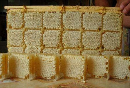 Мед в сотах для еды
